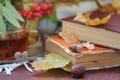 静物画用茶、书和叶子在秋天 免版税库存图片