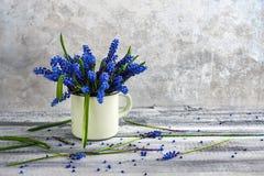 静物画花束春天开花蓝色 免版税图库摄影
