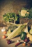 静物画菜、草本和果子 免版税库存图片