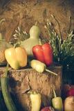 静物画菜、草本和果子 库存照片