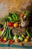 静物画菜、草本和果子 免版税库存照片