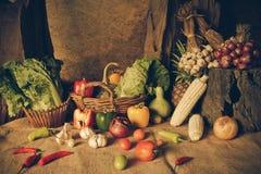 静物画蔬菜、草本和水果 免版税库存照片