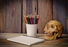静物画头骨、写生簿和颜色在木背景书写 库存图片