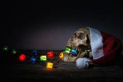 静物画头骨穿戴有礼物火焰信号器的圣诞老人帽子 免版税库存照片