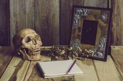 静物画头骨画框,花瓶,干玫瑰色笔记本概念频繁记忆 免版税库存图片