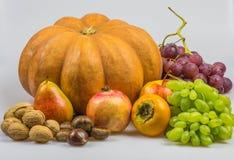 静物画,在白色背景的秋天食物 图库摄影