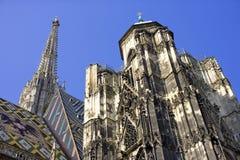 静脉奥地利圣徒斯蒂芬的大教堂哥特式样式 库存图片