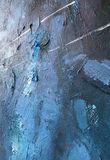 靛蓝深刻的波斯菊黑暗的夜  与自然靛蓝绘画纹理的深蓝背景 bri的令人惊讶的每夜的背景 免版税库存照片