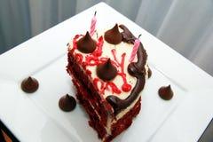 非常与蜡烛的鲜美和美丽的蛋糕 生日 免版税库存图片