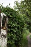 非常与路和自然的老门 免版税库存图片