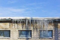 非常冷在冬天概念 免版税库存照片