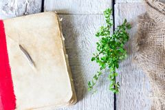 非常在桌上的老古色古香的书用在木背景的草本麝香草 图库摄影