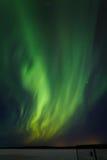 绿色波浪 库存图片