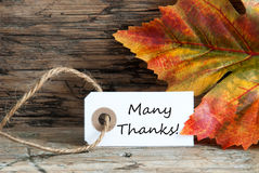 非常感谢秋天标签 免版税库存照片