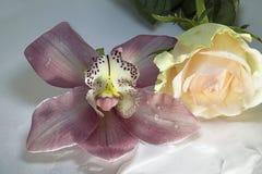 非常相当与玫瑰和水下落的五颜六色的兰花 图库摄影