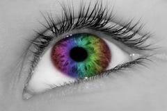 非常美丽的眼睛 库存图片
