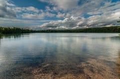 非常美好的夏天水风景 从海岸的看法向一个美丽如画的森林湖在蓝色多云天空下 免版税库存图片