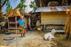 非常老尼泊尔妇女和她的山羊在后院她hous 免版税图库摄影