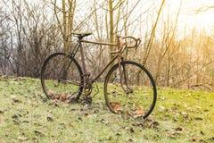 非常老铁生锈的自行车在绿草和秋天ye站立 免版税库存图片
