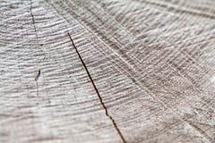 从非常老,被风化的片断的木纹理在木头 库存照片
