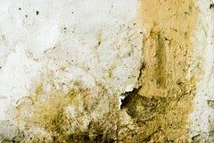 非常肮脏和decpmposed墙壁 朽烂和衰落抽象绘画和背景纹理  库存图片