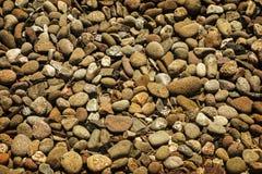 非常背景详细实际石头 图库摄影
