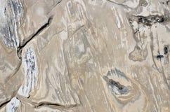 非常背景详细实际石头 库存图片