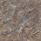 非常英亩地面和土的详细的无缝的纹理样式在高分辨率 免版税库存图片