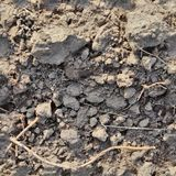 非常英亩地面和土的详细的无缝的纹理样式在高分辨率 库存图片