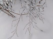 非常雪在俄罗斯 免版税库存图片