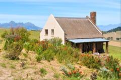 非洲人开花前房子红色winefarm 免版税库存照片