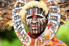 非洲人纵向 库存照片