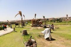 非洲公园在阿斯旺,埃及 免版税库存照片