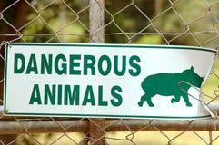 非洲动物符号 免版税库存照片