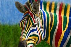 非洲南斑马 免版税库存图片