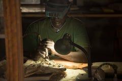 非洲古生物学家在工作 免版税库存图片
