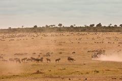 非洲吉普徒步旅行队 免版税库存照片