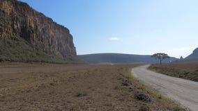 非洲大草原、干草用蜂蜜,金合欢和岩石的风景 股票录像