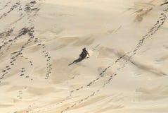 非洲孩子Sledding在大沙丘下 库存照片