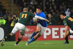 非洲布赖恩habana意大利符合橄榄球南与 免版税库存图片