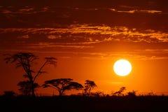 非洲徒步旅行队日落 免版税库存照片