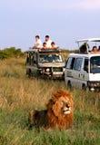 非洲徒步旅行队 库存照片