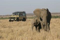 非洲徒步旅行队 免版税图库摄影