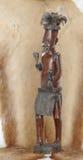 非洲战士 库存图片
