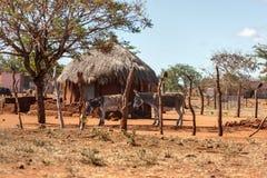 非洲房子在村庄 免版税图库摄影