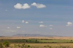 非洲横向 图库摄影