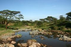 非洲河徒步旅行队serengeti坦桑尼亚 库存照片