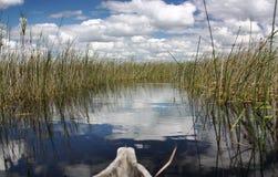 非洲河 免版税图库摄影