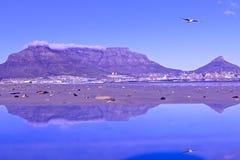 非洲海角山南表城镇 图库摄影