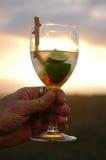 非洲玛格丽塔酒 库存照片